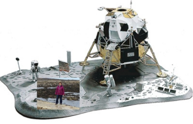 Lunar Mod W-Moon